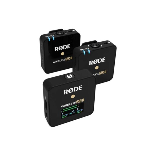 Wireless Microphones System